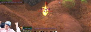 Player Levels to 60 by Killing Only Boars in WoW Classic