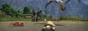 World Quests Bonus Event Weekly Quest Rewards 750 Anima
