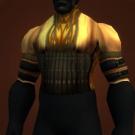 Elegant Tunic, Goldweave Tunic, Sylvanaar Elite Caster's Armor Model