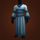 Seer's Robe Model