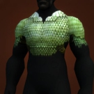 Fenclaw Armor, Warp-Shielded Hauberk Model