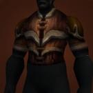 Ahn'Kahar Blood Hunter's Tunic, Hauberk of a Thousand Cuts Model
