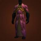 Doomcaller's Robes Model