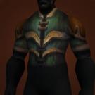 Carapace of Forgotten Kings, Longstrider's Vest, Sanctified Ahn'Kahar Blood Hunter's Tunic, Hauberk of a Thousand Cuts, Longstrider's Vest Model