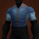 Vest of Forsaken Necromancy, Royal Blouse, Abjurer's Tunic Model