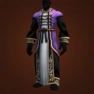 High Councillor's Robe Model