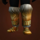 Feet of the Lynx Model