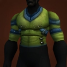 Tortoise Armor Model