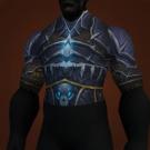 Conqueror's Scourgestalker Tunic Model
