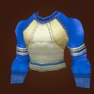 Sage's Cloth Model