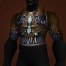 Ranger-General's Chestguard Model