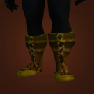 Robust Boots Model