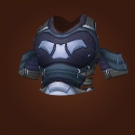 Skystalker's Tunic Model