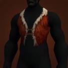 Aboriginal Vest Model
