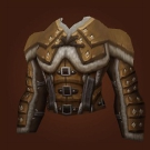 Vest of the Assailant Model