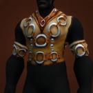 Wanderer's Armor Model