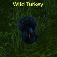 Pilgrim's Bounty - Wild Turkey