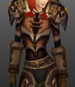 Ahn'Kahar Blood Hunter's Battlegear Copy