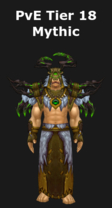 Druid PvE Tier 18 Mythic Set