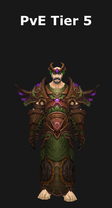 Druid PvE Tier 5 Set