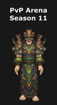 Druid PvP Arena Season 11 Set