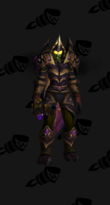 Hunter PvE Tier 10.5H Female Set