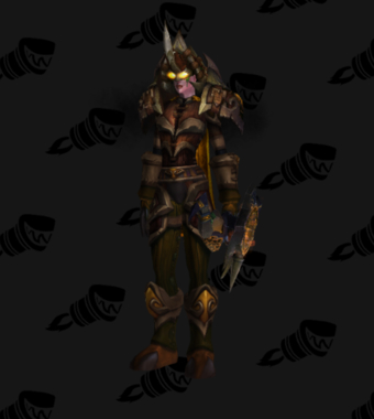 Hunter PvE Tier 10 Female Set