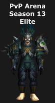 Hunter PvP Arena Season 13 Elite Set