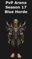Hunter PvP Arena Season 17 Blue Horde Set