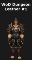 WoD Dungeon Leather Set #1
