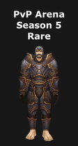 Paladin PvP Arena Season 5 Rare Set