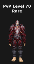 Paladin PvP Level 70 Rare Set