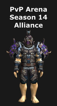 Rogue PvP Arena Season 14 Alliance Set