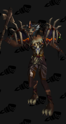 Feral Priest Cloth Transmog