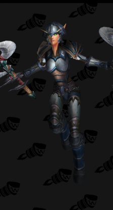 Sleek Warrior Plate Transmog